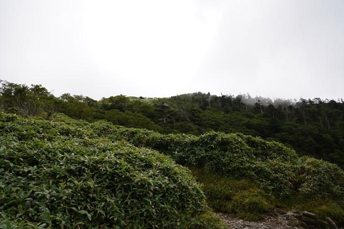番外編_徳島県_剣山 No56