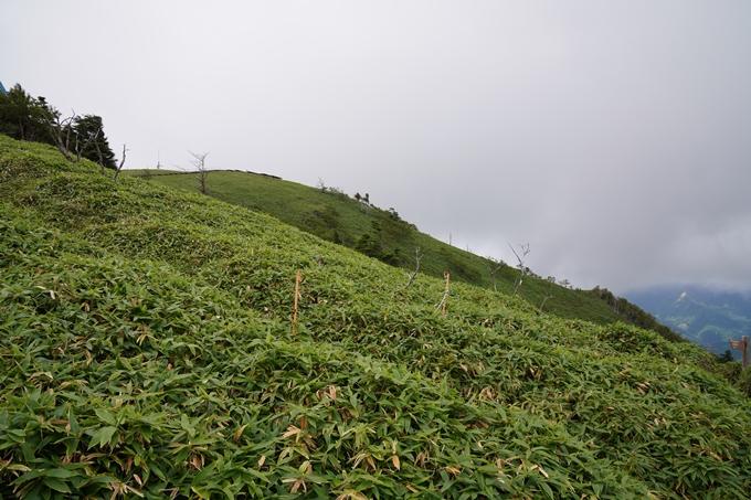 番外編_徳島県_剣山 No64