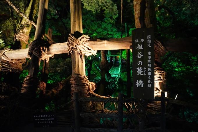 番外編_徳島県_祖谷 No41