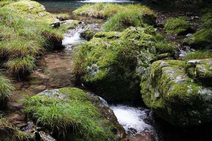 高知県_追合の滝 No10