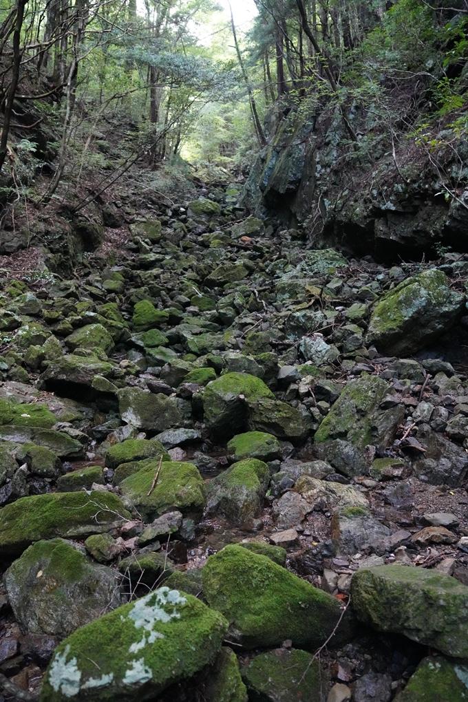 高知県_追合の滝 No13