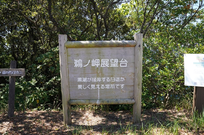 番外編_高知県_鵜ノ岬展望台 No1