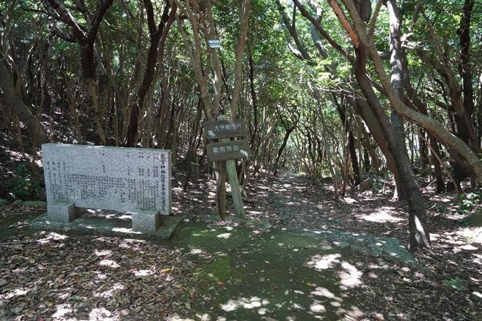 番外編_高知県_龍宮神社 No5