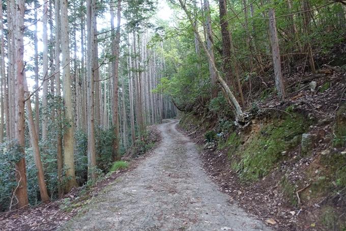 愛宕山_猪ヶ谷 No9