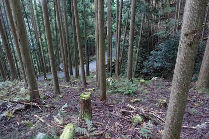 愛宕山_猪ヶ谷 No19