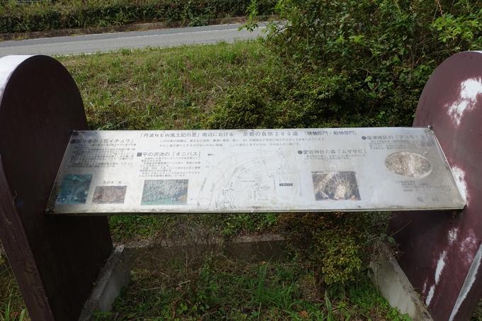 三郎ヶ岳 No3