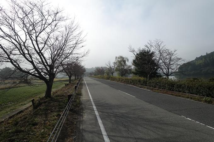 三郎ヶ岳 No6