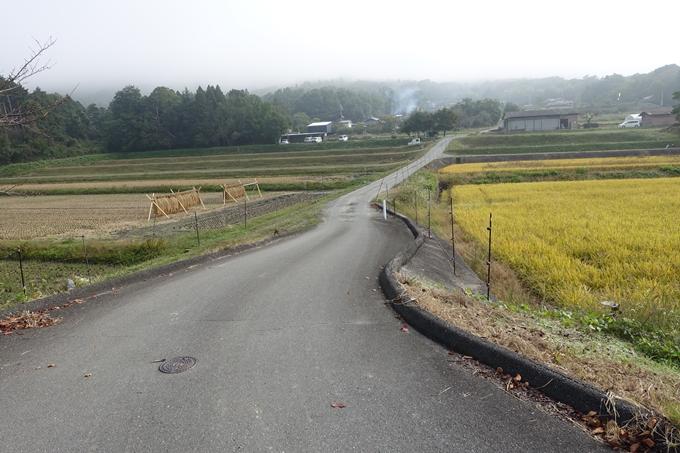 三郎ヶ岳 No8