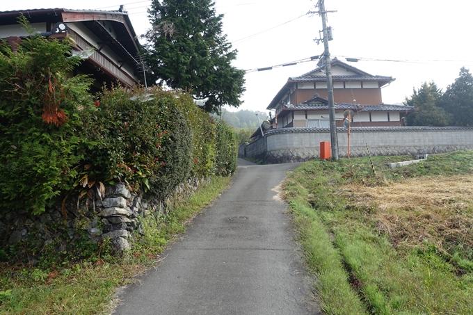 三郎ヶ岳 No12