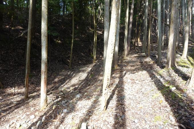 三郎ヶ岳 No27