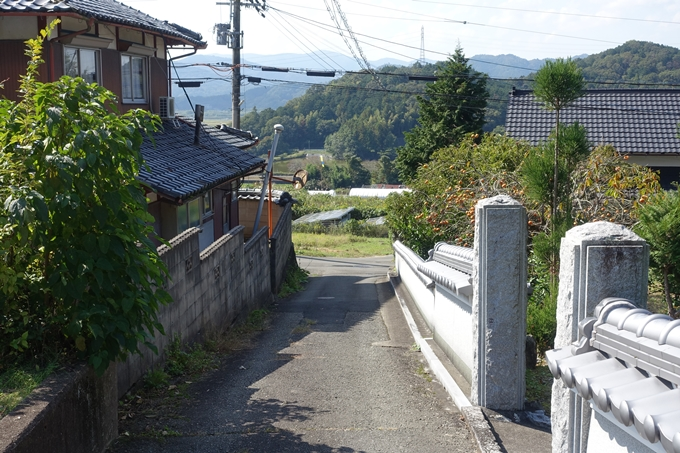 三郎ヶ岳 No114