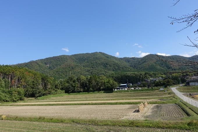 三郎ヶ岳 No117