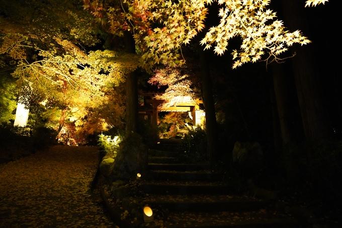 京都_紅葉_2020_神蔵寺 No9