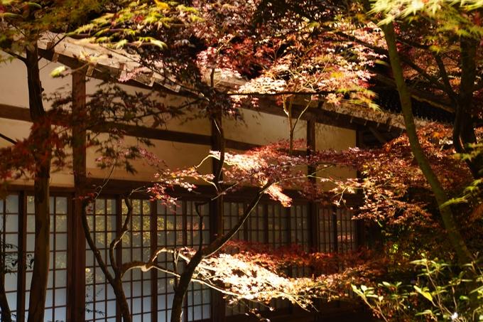 京都_紅葉_2020_神蔵寺 No20