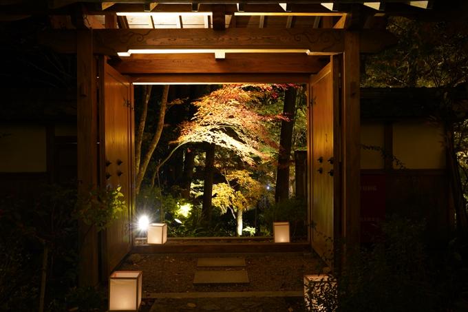 京都_紅葉_2020_神蔵寺 No15