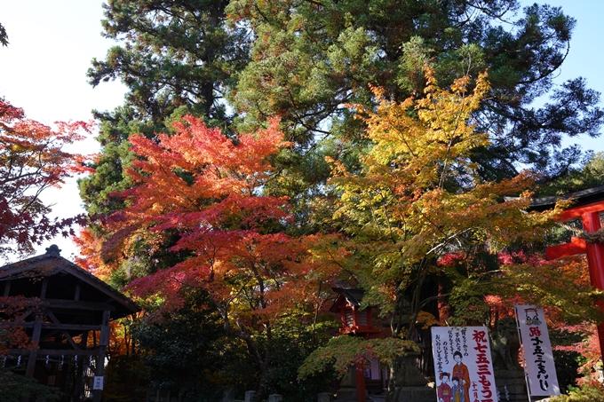 京都_紅葉_2020_鍬山神社 No7