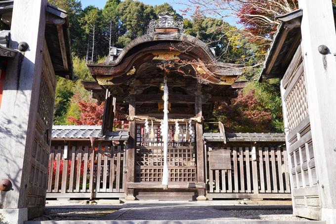 京都_紅葉_2020_鍬山神社 No14