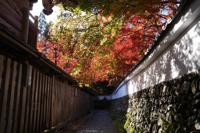 京都_紅葉_2020_鍬山神社 No21