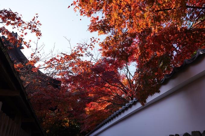 京都_紅葉_2020_鍬山神社 No23