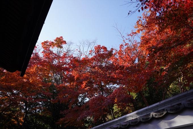京都_紅葉_2020_鍬山神社 No25