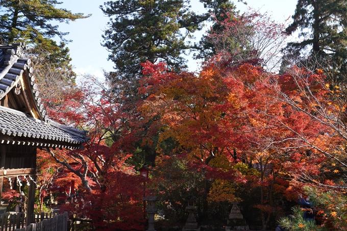 京都_紅葉_2020_鍬山神社 No27