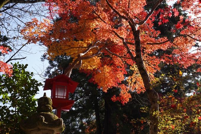 京都_紅葉_2020_鍬山神社 No29