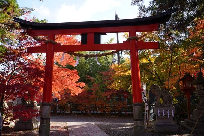 京都_紅葉_2020_鍬山神社 No30
