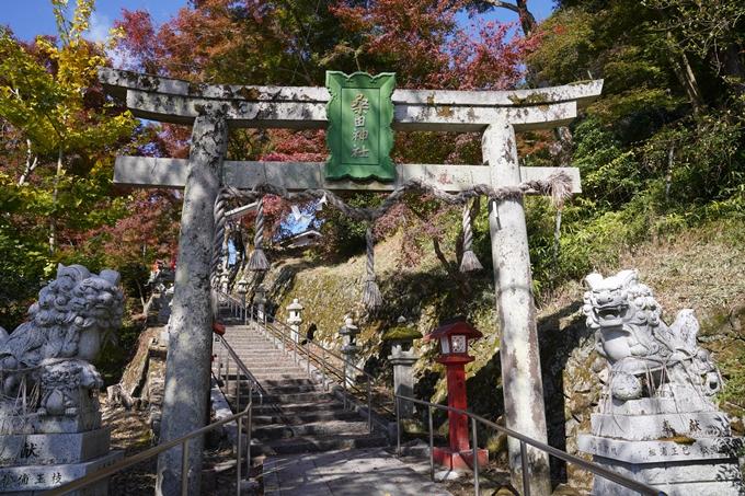 京都_紅葉_2020_桑田神社 No7