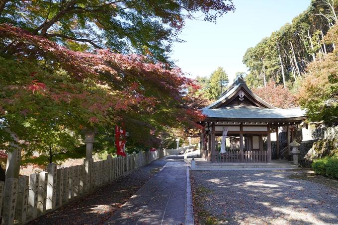 京都_紅葉_2020_桑田神社 No11