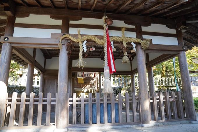京都_紅葉_2020_桑田神社 No15