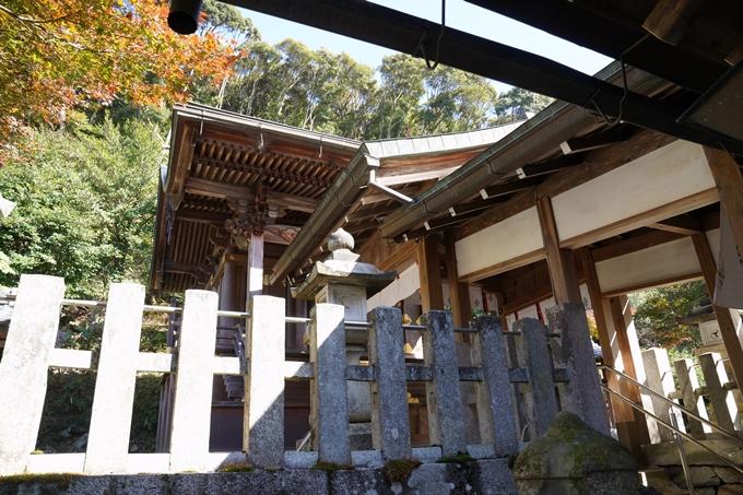 京都_紅葉_2020_桑田神社 No20