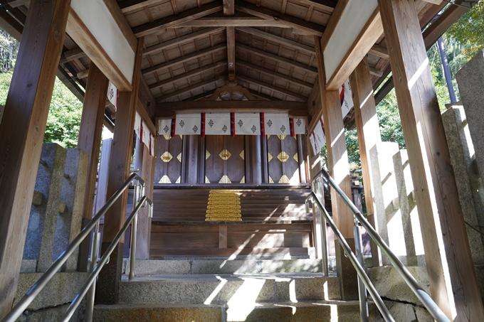 京都_紅葉_2020_桑田神社 No23