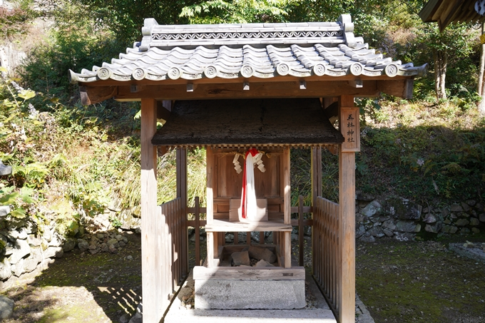 京都_紅葉_2020_桑田神社 No26