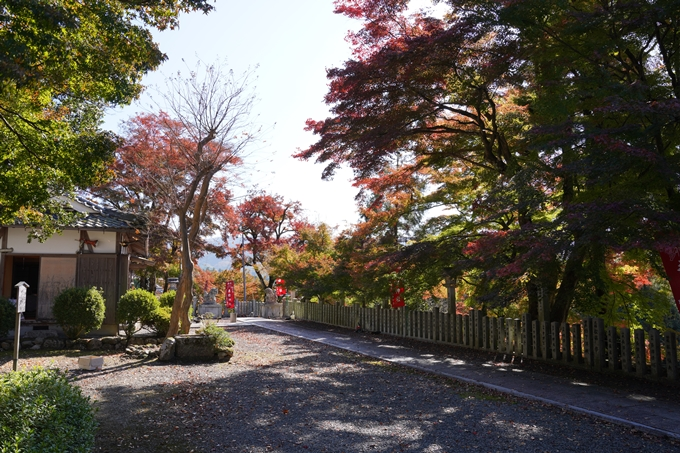 京都_紅葉_2020_桑田神社 No35