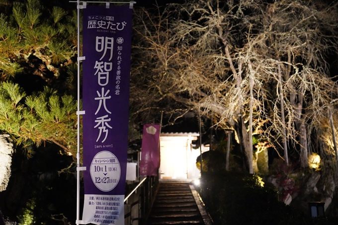丹波夢ナリエ_2020 No60