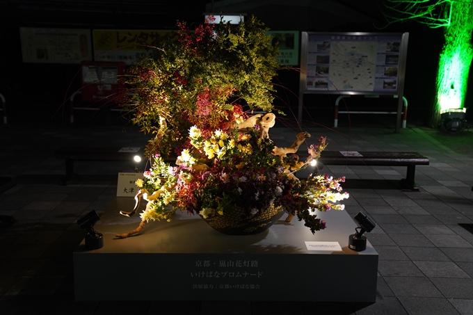 嵐山花灯路_2020_01 No3