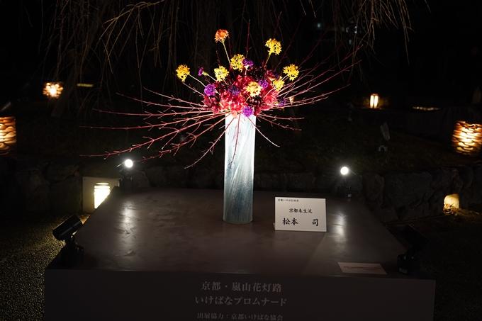 嵐山花灯路_2020_01 No29