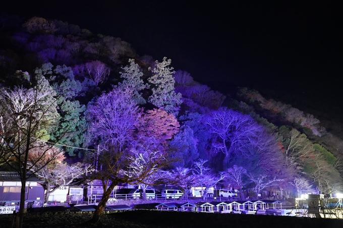 嵐山花灯路_2020_01 No31