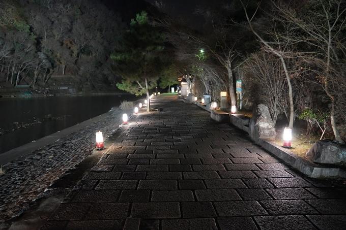 嵐山花灯路_2020_02 No3
