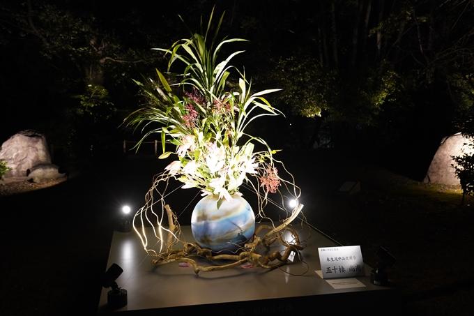 嵐山花灯路_2020_02 No14