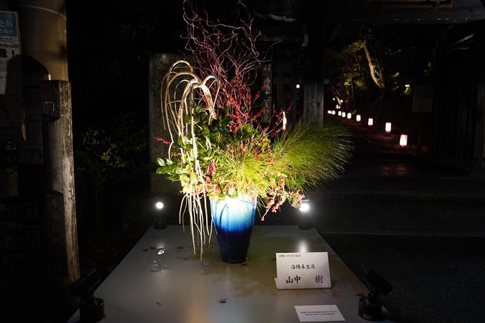 嵐山花灯路_2020_02 No18