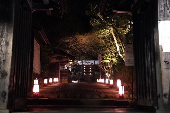 嵐山花灯路_2020_02 No20