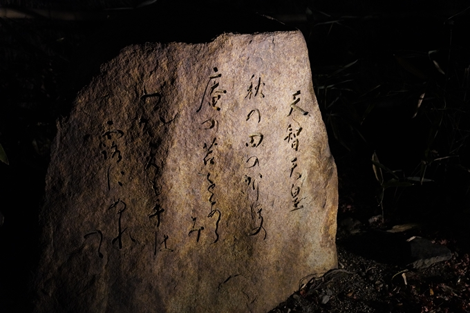 嵐山花灯路_2020_02 No33