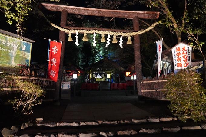 嵐山花灯路_2020_02 No36