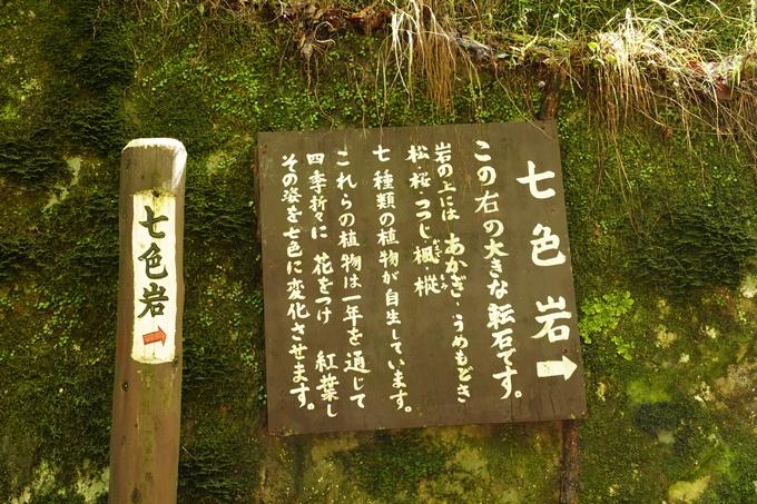 赤目四十八滝 No52