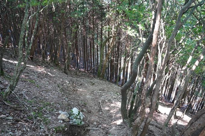 番外編_滋賀県_御池岳 No114
