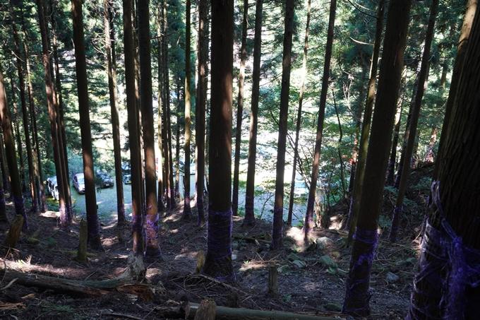 番外編_滋賀県_御池岳 No121
