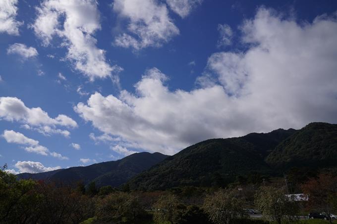 番外編_岐阜県_養老の滝 No5