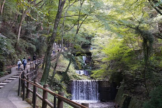 番外編_岐阜県_養老の滝 No16