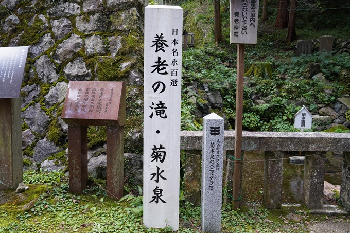 番外編_岐阜県_養老の滝 No41